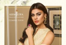 asim jofa lawn dresses 2019 organza collection