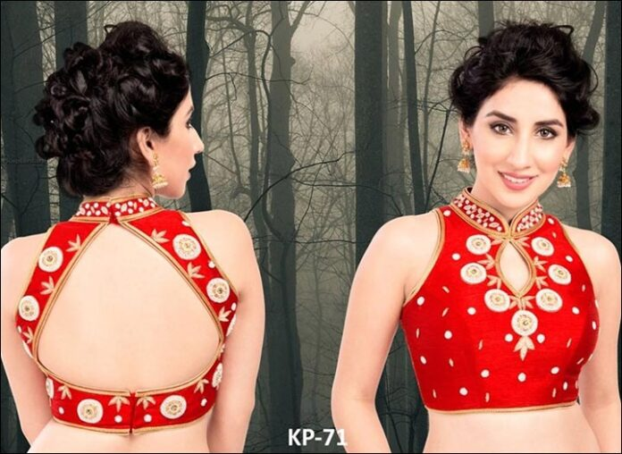 Red Silk Bold Blouse Back Neck Design